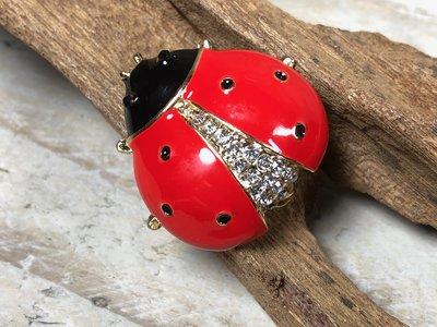 broche lieveheersbeestje