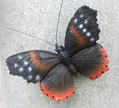magneet vlinder atalanta