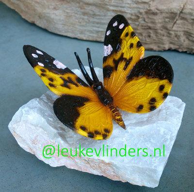 vlinder brons geel op steen