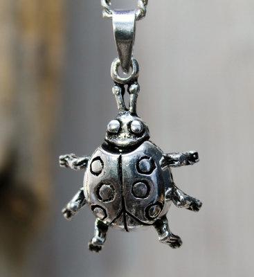 hanger lieveheersbeestje echt zilver