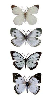 scrapbooking vlinders