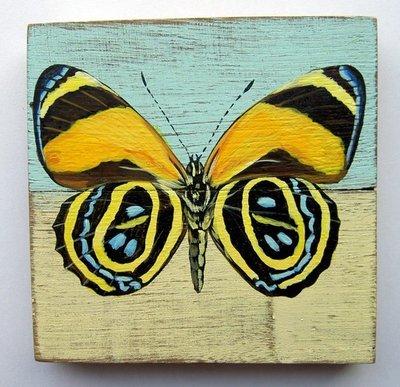 schilderijtje vlinder sloophout 11x11cm