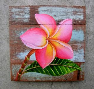 plumeria bloem schilderij