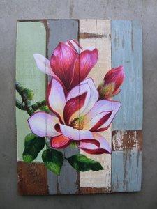 magnolia schiderij