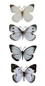 scrapbooking vlinder