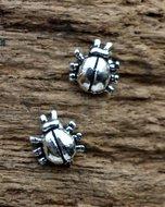 lieveheersbeestje oorstekers