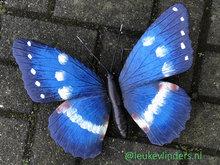 vlinder van metaal voor aan de wand